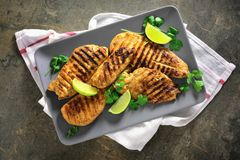 Miso marinated grilled chicken breasts Stock Photography