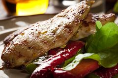 Grilled chicken breasts served with grilled paprika Stock Image