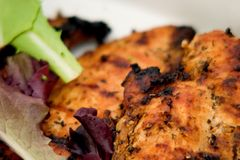 Grilled Chicken Breasts Up Close. Closeup of smoked chicken dinner on a plate with vegetables Royalty Free Stock Image
