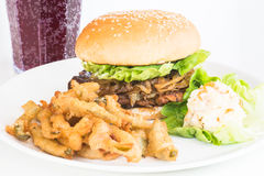 Grilled chicken burger with jalapeno fries and salad Stock Image