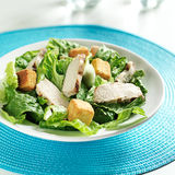 Grilled chicken on caesar salad Royalty Free Stock Photos