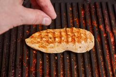 Grilled Chicken royalty free stock image