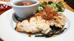 Grilled Chicken Dish Stock Images