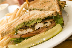 Grilled chicken filet sandwich Royalty Free Stock Images