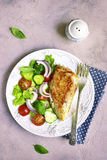 Grilled chicken fillet with vegetable salad. Royalty Free Stock Images