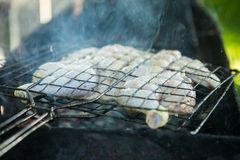 Grilled chicken. Fried chicken on grill pan. Royalty Free Stock Images
