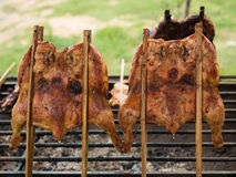 Grilled chicken on the grill. Front view Stock Photography
