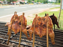 Grilled chicken on the grill. Side view stock photography