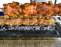 Grilled chicken on the hot charcoal. Royalty Free Stock Photos
