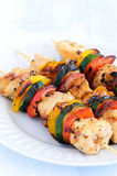 Grilled chicken kababs with vegetables Royalty Free Stock Photo