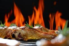 Grilled chicken leg Stock Photos
