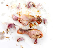Grilled chicken leg on white background. Stock Image