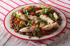 Grilled chicken with lentils and cilantro close-up. horizontal Royalty Free Stock Images