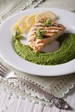 Grilled chicken and mashed mint with green peas, vertical Stock Photo
