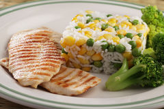Grilled chicken meat with rice and vegetables Royalty Free Stock Image