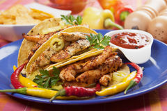 Grilled chicken meat in taco shells Royalty Free Stock Image