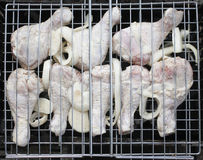 Grilled chicken with onion Royalty Free Stock Photo