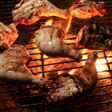 Grilled chicken on an open flame Royalty Free Stock Image