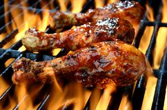 Grilled chicken over open flame Stock Image