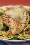Grilled chicken with pasta Stock Photography