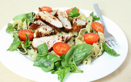 Grilled chicken and pasta salad side view Royalty Free Stock Photos
