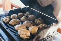 grilled chicken at a picnic. The man laid the chicken in the marinade on the grill for its preparation. Entire large carcasses of stock photography