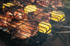 Grilled chicken pieces with corn, summer picnic royalty free stock photography
