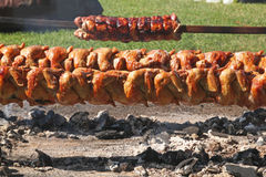 Grilled Chicken and Pork Loin on a Spit Royalty Free Stock Photos