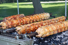 Grilled Chicken and Pork Loin on a Spit Stock Photography