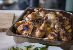 Grilled chicken and potatoes Stock Photography