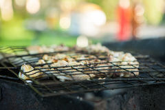 Grilled chicken. Preparation of meat slices in sauce on fire Stock Photography