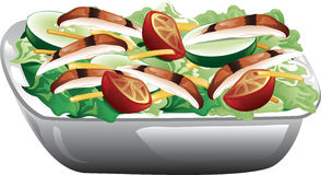 Grilled Chicken Salad. Illustration of a grilled chicken salad with tomatoes, cucumbers and cheese Stock Photography