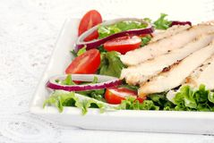 Grilled chicken salad Stock Image