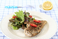 Grilled Chicken with Salad Stock Photography