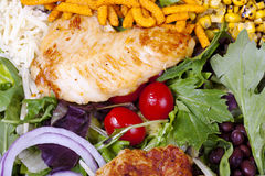 Grilled chicken salad. Stock Photography