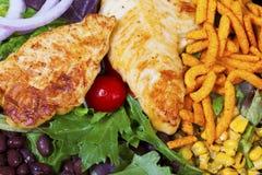Grilled chicken salad. Stock Photos