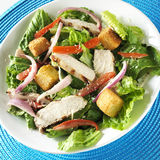 Grilled chicken salad. Top down view of a grilled chicken salad Stock Photos