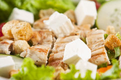 Grilled chicken salad. With feta cheese Stock Images