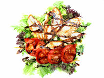 Grilled chicken salad Stock Photography
