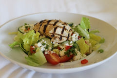 Grilled Chicken Salad with Cucumbers, Tomatoes and Feta Royalty Free Stock Photos