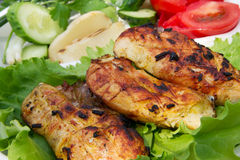 Grilled chicken on salad Stock Images