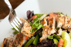 Grilled Chicken Salad Stock Images