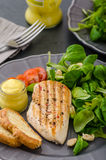 Grilled chicken with salad and nuts Royalty Free Stock Photos