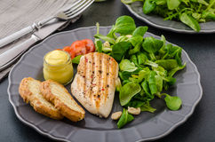 Grilled chicken with salad and nuts Royalty Free Stock Photography