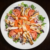 Grilled Chicken Salad on a Plate Royalty Free Stock Photography