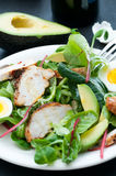 Grilled Chicken Salad Royalty Free Stock Images