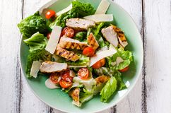 Grilled chicken salad with tamatoes and parmesan cheese. Grilled chicken salad with tomatoes and parmesan cheese on white wooden background Stock Images