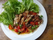 Grilled chicken salad. And vegetables Stock Images
