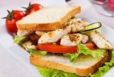 Grilled chicken sandwich Stock Photos