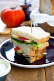 Grilled chicken sandwich Royalty Free Stock Photography